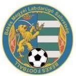 békés megyei labdarúgó szövetség